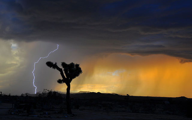 Lightning bolt over Mojave Desert